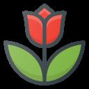 Tulip_spring_flower-128.png